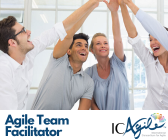 Agile Team Facilitator